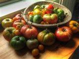 Harvest 2014 2