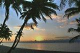 Key West Sunrise VII