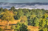 Misty Shawangunk View