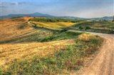 Tuscan Ridge Top Trail
