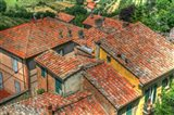 Tuscan Roofs