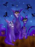 Night Cats 3