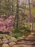 Pink Spendor