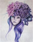 Hydrangea - Pixie Blossoms