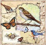 Birds, Butterflys, Bees-Pastels