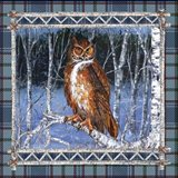 Birch Frame Plaid-Owl