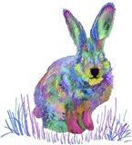 Psychedelic Rainbow Bunny
