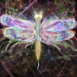 Dragonfly Latern