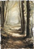 Forest Path Oil