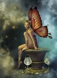 Fairy Glowflies