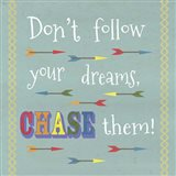 Don't Follow Your Dreams 1