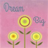 Dream Big Pink
