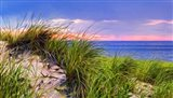 Cape-Dune Sunset