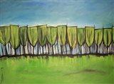 Evangelist Trees