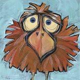 Square Bird 24B