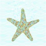 Stella Starfish