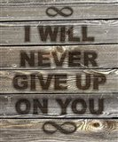 I Will Never Give Up On You