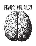 Brains are Sexy black