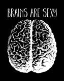 Brains are Sexy white