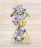 Rustic Butterfly Terrarium