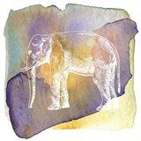 Color Spot Safari Animals Elephant