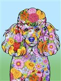 Flowers Poodle