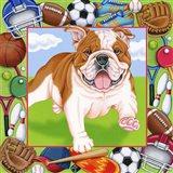 Sports Bulldog