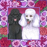 Valentine Poodles
