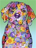 Flowers Beagle