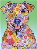 Flowers Jack Russell