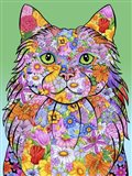 Flowers Maine Coon Cat
