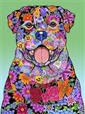 Flowers Rottweiler