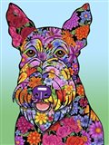 Flowers Scottish Terrier