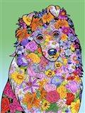 Flowers Shetland Sheepdog
