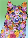 Flowers Siberian Husky