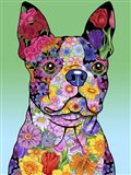 Flowers Boston Terrier