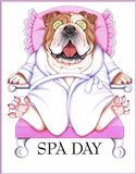 Spa Bulldog