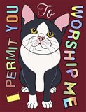 Tuxedo Cat Graphic Style