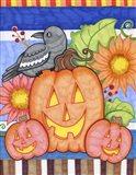 Crows Pumpkin Patch