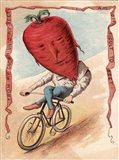 Bike Beet