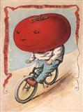 Bike Tomato
