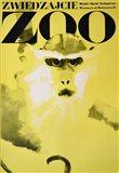 Monkey - Zoo