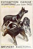 Exposition Canine Geneva