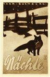 Fox Nite