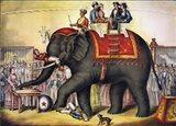 Performing Elephant, 1874