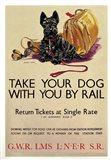 Take Your Dog