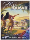 Fly Hawaii