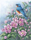 Blue Bird And Wild Roses