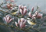 Magnolia And Chickadees