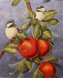 Chickadees and Apples